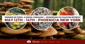 Friends of Fungi Mushroom Retreat