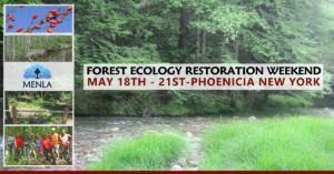 Volunteer Forest Resotration Retreat